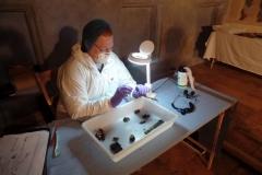Prof Sue Black in Action